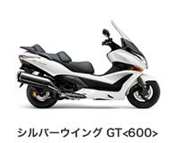 btn_bike_swgt600