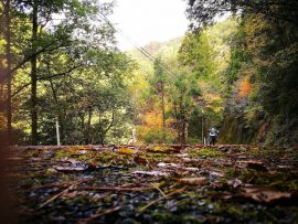 紀伊半島ツーリング(2017/11/18-19)